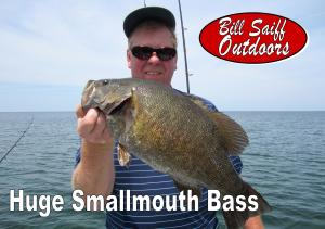 Smallmouth Bass Photo JNL 2015-300