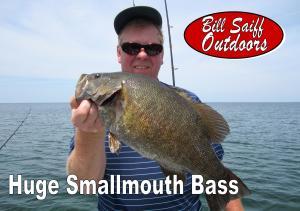 Smallmouth Bass Photo JNL 2015-300