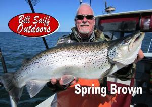Spring Brown Photo JNL 2015-300