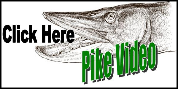 Ice Fishing Pike Video Tag 2016-150