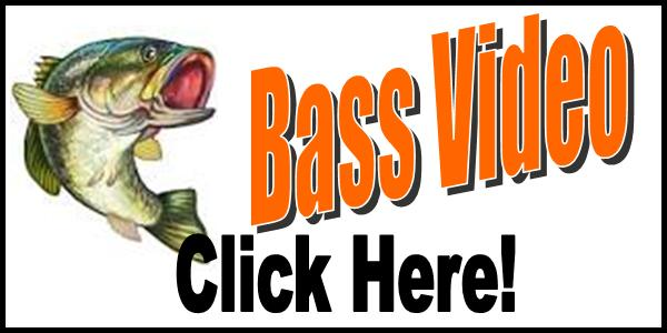 Bass Video Tag 2016-150
