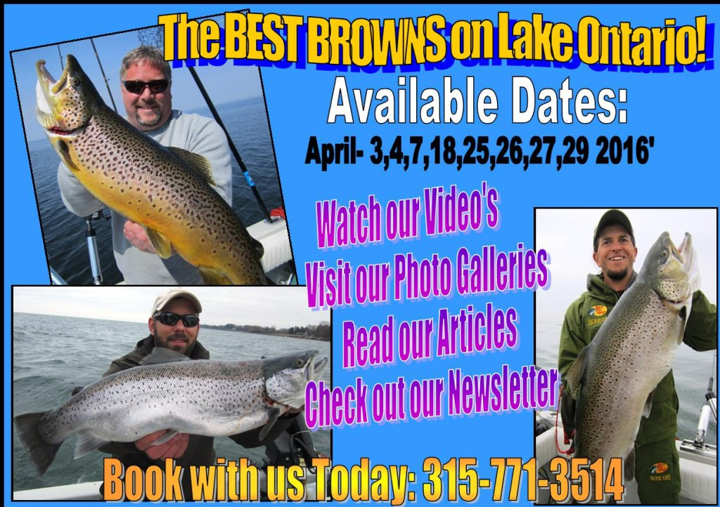 Brown Trout Ad Available Dates 2016-150