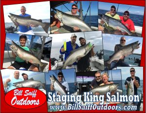 Staging King Salmon Ad2 2017-150